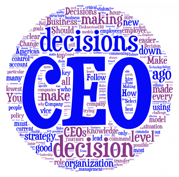 Rules of CEO decision-making