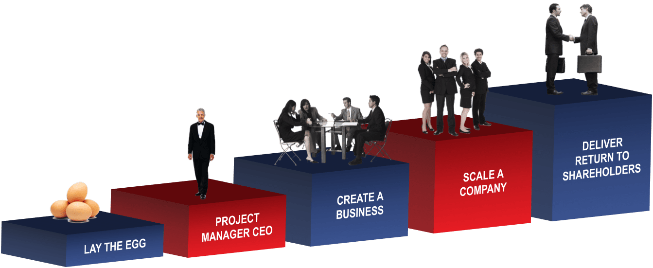 CEO role at various company stages